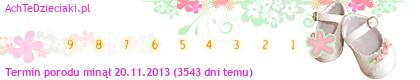 http://s7.suwaczek.com/20131120685253.png